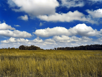 Cumulus Humilis Clouds. Photo: PiccoloNamek [CC BY-SA]